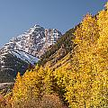 Aspen And Mountains 4 by Lee Kirchhevel