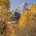 Aspen And Mountains 5 by Lee Kirchhevel