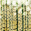 Aspen Colorado Abstract Panorama 3 by Andee Design