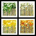 Aspen Colorado Abstract Square 4 In 1 Collection by Andee Design