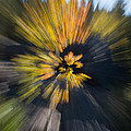 Aspen Explosion by Josh Baker