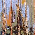 Aspen Forest Colorado by Susan A Becker