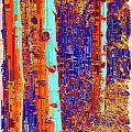 Aspen Grove 7 by Tim Allen