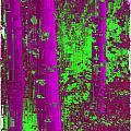 Aspen Grove 9 by Tim Allen