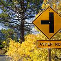 Aspen Road  by Priya Ghose