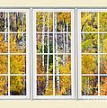 Aspen Tree Magic Cream Picture Window View 3 by James BO  Insogna