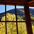 Aspen Window 2 by Tonya Hance