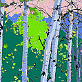 Aspensincolor Green by Robert J Sadler