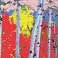 Aspensincolor Redorange by Robert J Sadler