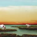 Assateague Island Sunset by Albert Puskaric