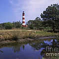 Assateague Lighthouse - Fm000081 by Daniel Dempster