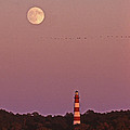 Assateague Lighthouse Va by Skip Willits