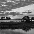Assateague Salt Marsh Bw by Photographic Arts And Design Studio