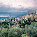 Assisi  by A Rey