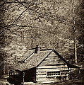 At Home In The Appalachian Mountains by Paul W Faust -  Impressions of Light