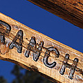 At Home On The Ranch by Lee Roth