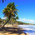 At The Beach Palmas Del Mar by Marilyn Holkham