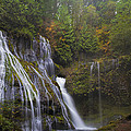 At The Bottom Of Panther Creek Falls by David Gn