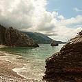 At The Cove by Rumiana Nikolova