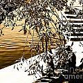 At The Lake-44 by David Fabian