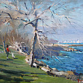 At The Park By Lake Ontario by Ylli Haruni