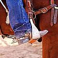 At The Rodeo by Barbara Zahno