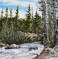 At The Top Of Alberta Falls by Denny Dowdy