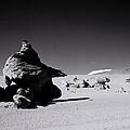 Atacama Desert by Shaun Higson