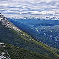 Athabasca River Valley - Jasper by Stuart Litoff