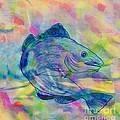 Atlantic Codfish Digital Color by Barbara Griffin