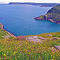 Atlantic Ocean From Signal Hill National Historic Site In Saint John's-nl by Ruth Hager