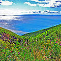 Atlantic Ocean View Point From Cape Breton Highlands National Park-nova Scotia by Ruth Hager