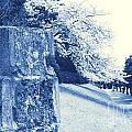 Atsugi Pillbox Walk  E1 by Jay Mann
