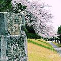 Atsugi Pillbox Walk  I1 by Jay Mann