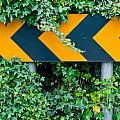 Attention Road Sign  by Luis Alvarenga
