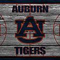 Auburn Tigers by Joe Hamilton
