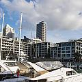 Auckland City View by Bob Phillips