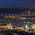 Auckland Marina by Bob Phillips