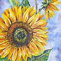 Audrey's Sunflower by Jean Plout