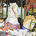 Audubon Carousel by Colleen Marquis