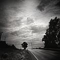Auf Dem Heimweg by Zapista