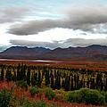 August In Alaska by Jeremy Rhoades