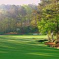 Augusta Hole 12 by Bo  Watson