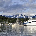 Auke Bay Harbor by Cathy Mahnke