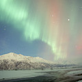 Aurora Borealis by Cary Anderson