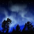Aurora Borealis Wall Mural by Frank Wilson