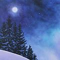 Aurora Borealis Winter by Cecilia Brendel