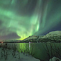 Aurora In Nothern Norway I by Tom Kiil