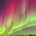 Aurora Panorama Over Northern Studies by Alan Dyer