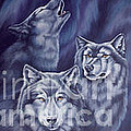 Aurora Wolves by Wendy Froshay